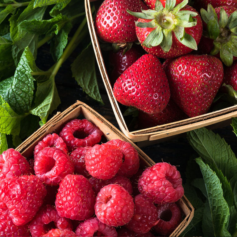 u-pick berries yarra valley